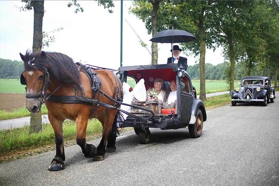 bijzonder-bruidspaar in koets Beers N.br.